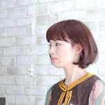 style_short_hashi_01